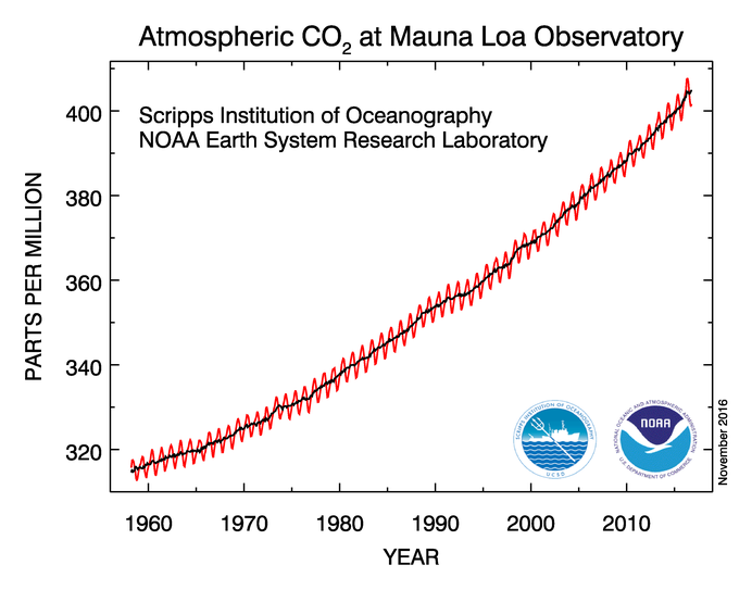 Global Surface CO2 Trends and Growth in Atmosphere